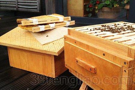 蜂箱组装步骤图